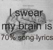 What my brain is mostly made of…