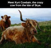 Meet Kurt Cowbain…