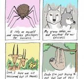 Sloths are my spirit animal…