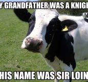My grandfather was a knight…