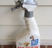 No chew deterrent…