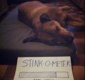Stink-o-meter…