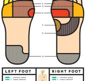 Foot science…