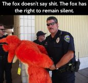 What the fox said…