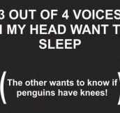 My brain at 3 AM…