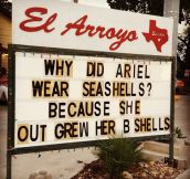 The reason Ariel wore seashells…