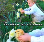 Boy helps his pet chicken smell a flower…