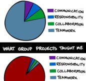 What group projects really taught me…