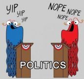 The truth about politics…