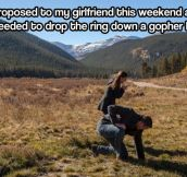 Not the best way to end your marriage proposal…