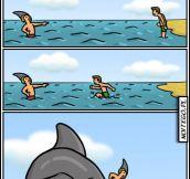 Never trust sharks…