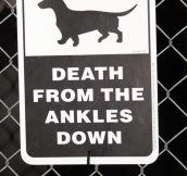 From the ankles down…
