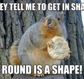 Fitness squirrel…