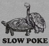 Very slow poke…