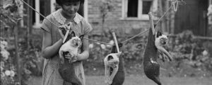 26 Old School Photos of Dressed Up Pets