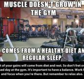 Fitness Information (7 pics)