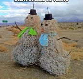 There are snowmen in Texas too