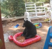 Too Big For The Baby Pool