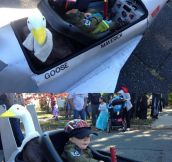 Top Gun Halloween…
