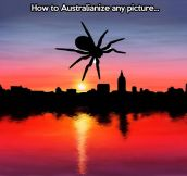 Quickest way to Australianize any picture…