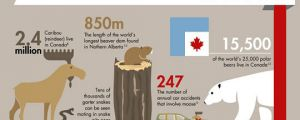 Insane facts about Canada…