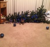 Christmas is ruined…