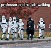 My professor and his lab…