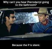 Pterodactyl sounds…