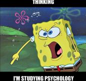 As a psychology student…