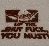 Yoda tells it like it is…