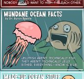 Ocean facts you probably don't know…