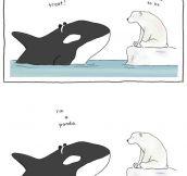Orca's Halloween…