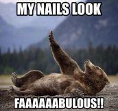 Bear's vanity…