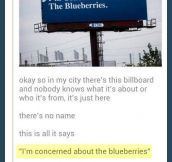 Concerned about the blueberries…