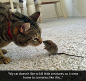 A hunter with a big heart…
