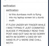 You were one chill moth…