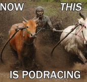 Real life podracing…