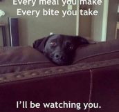 The love song from every dog ever…