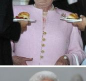The best pictures of the Queen…