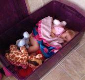 Unconventional nap…