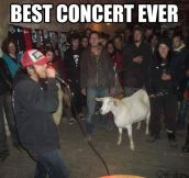 You goat to be kidding me…