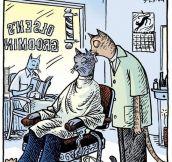 Barber Cat…