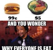 Why everyone is fat…