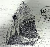 Things sharks never say…