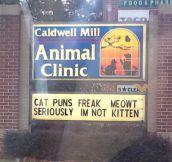 My local vet's street sign…