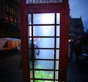 Phone tank…