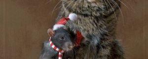 14 More Holiday Pets