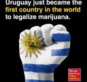 Breaking News! Go Uruguay!