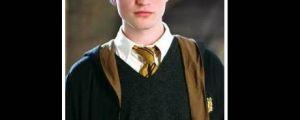 Good Guy Cedric Diggory