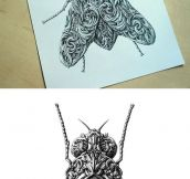 Renaissance-style insect drawings
